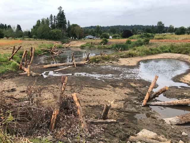 floodplain restoration project near Pleasant Valley