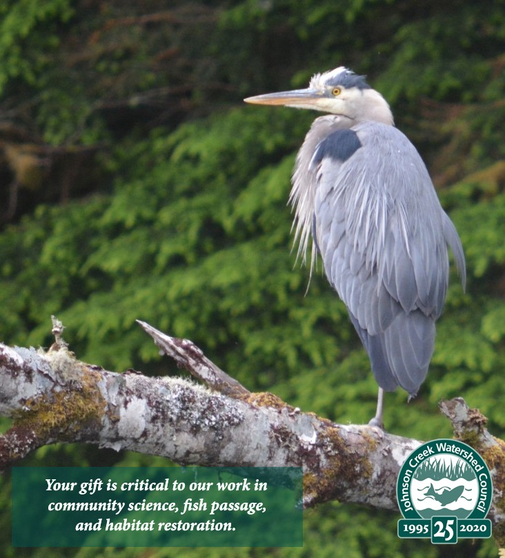 great blue heron image with logo